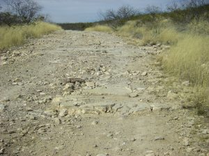 McCool Travel: Loneliest Road